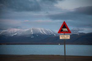 探索世界極北的冷岸群島